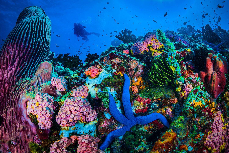 Foto 8 de Agencias de viajes en  | James Bird Travel