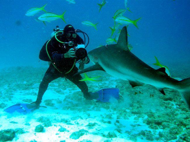 Agencia de viajes, pesca deportiva