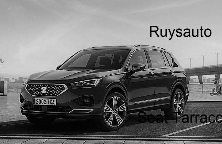 Foto 22 de Concesionarios de coches en  | Ruysauto