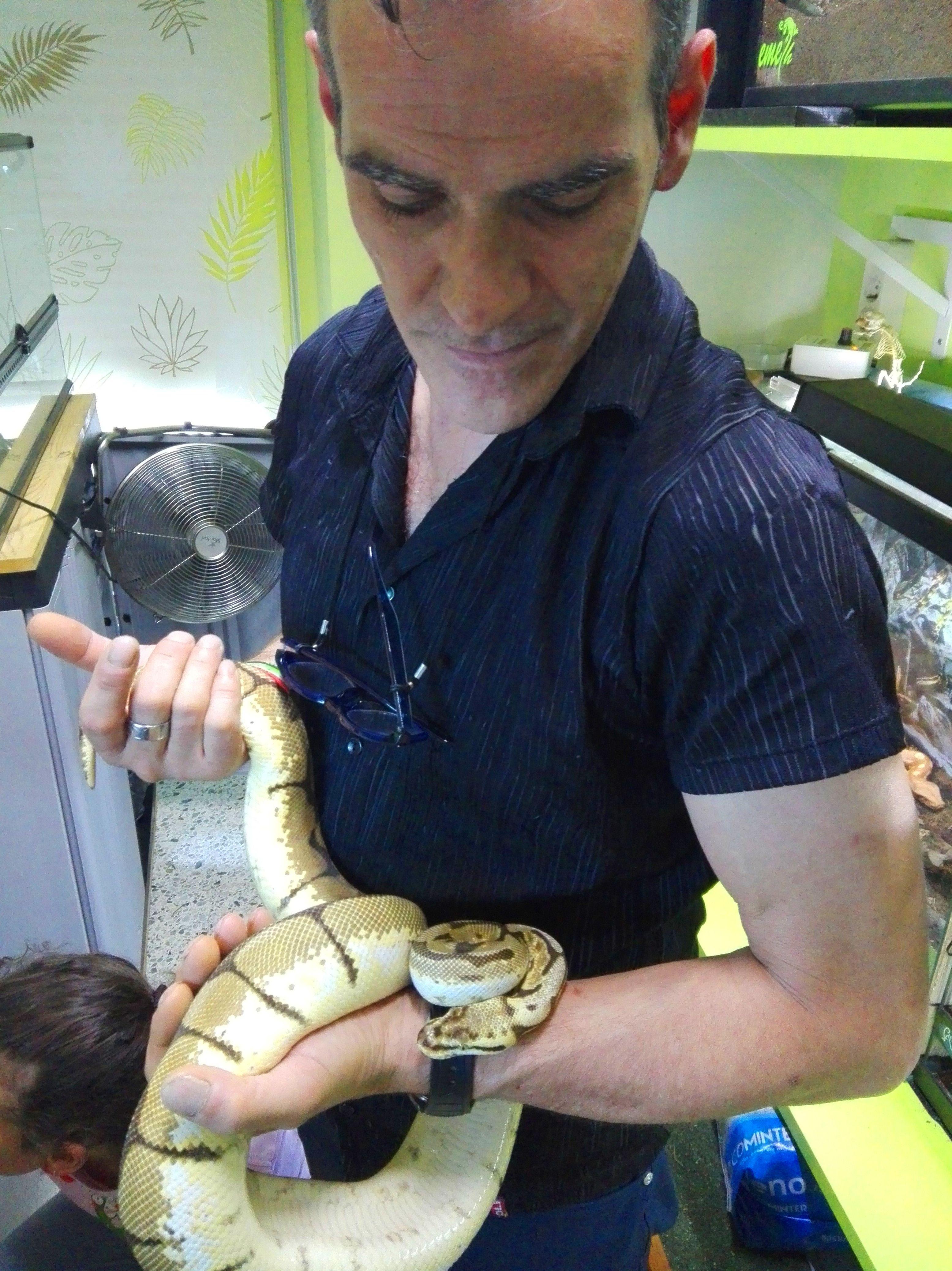 Foto 20 de Tienda de animales exóticos en Viladecans | Reptil Parc