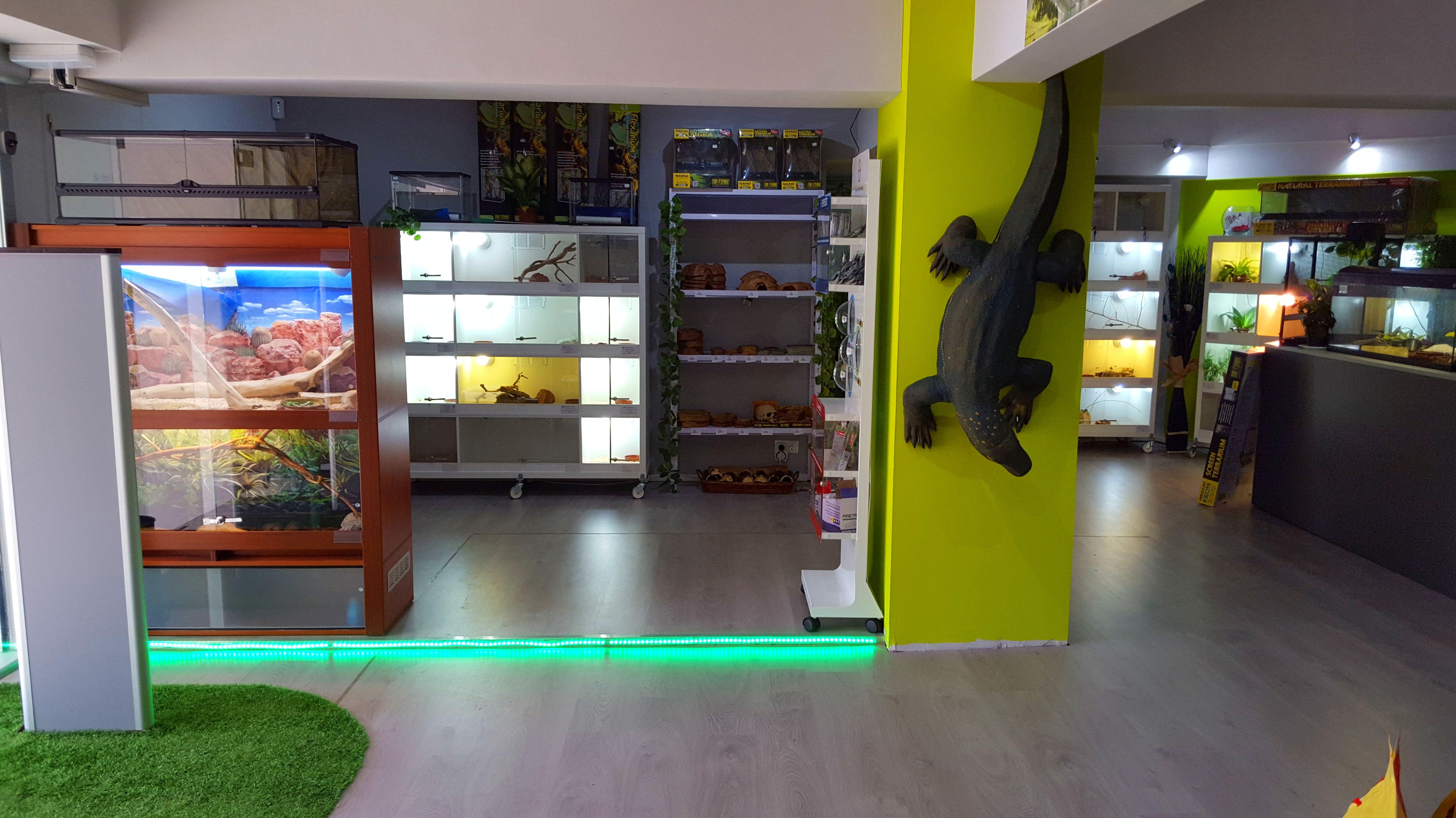 Foto 37 de Tienda de animales exóticos en Viladecans | Reptil Parc