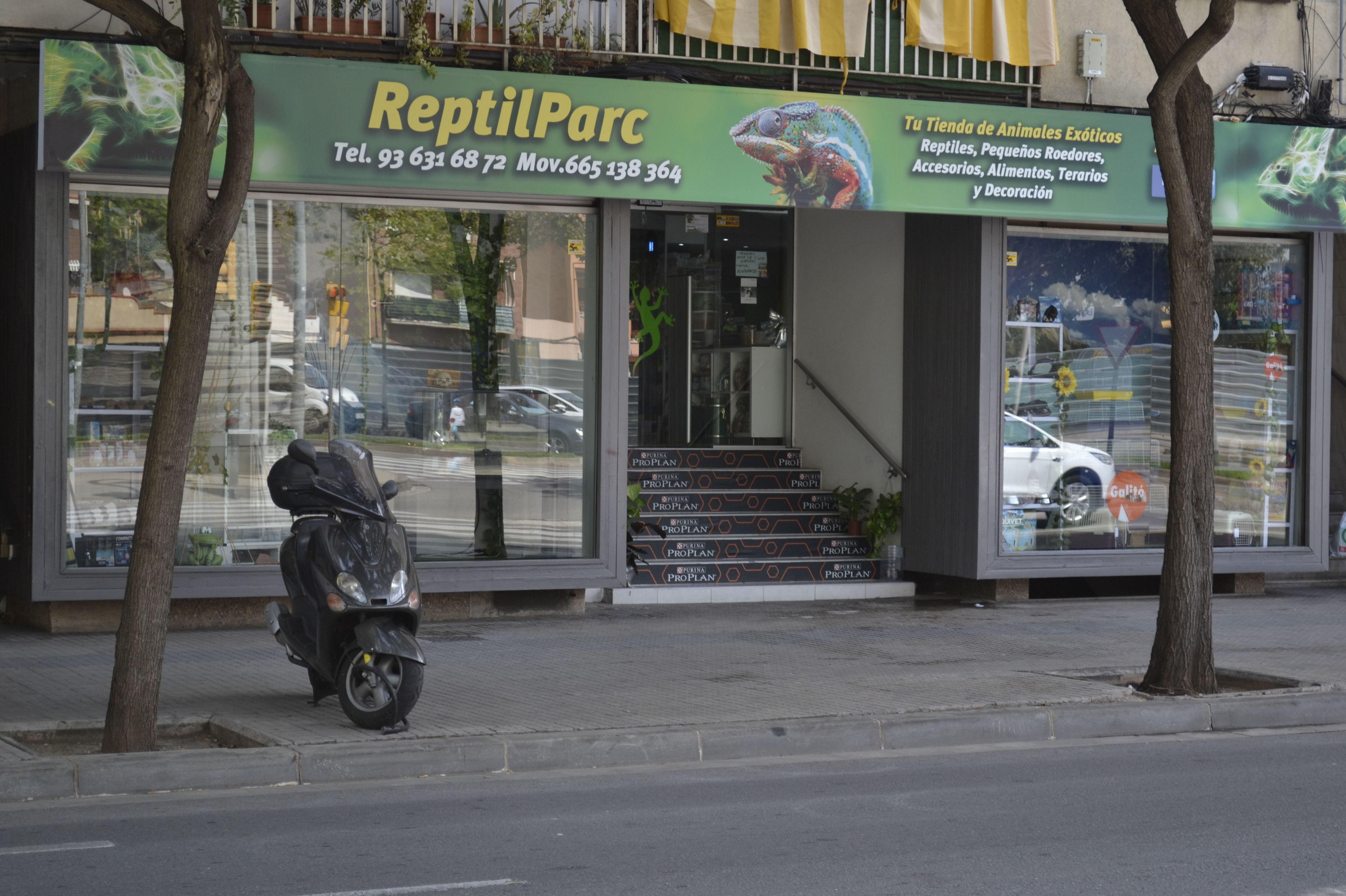 Foto 5 de Tienda de animales exóticos en Viladecans | Reptil Parc