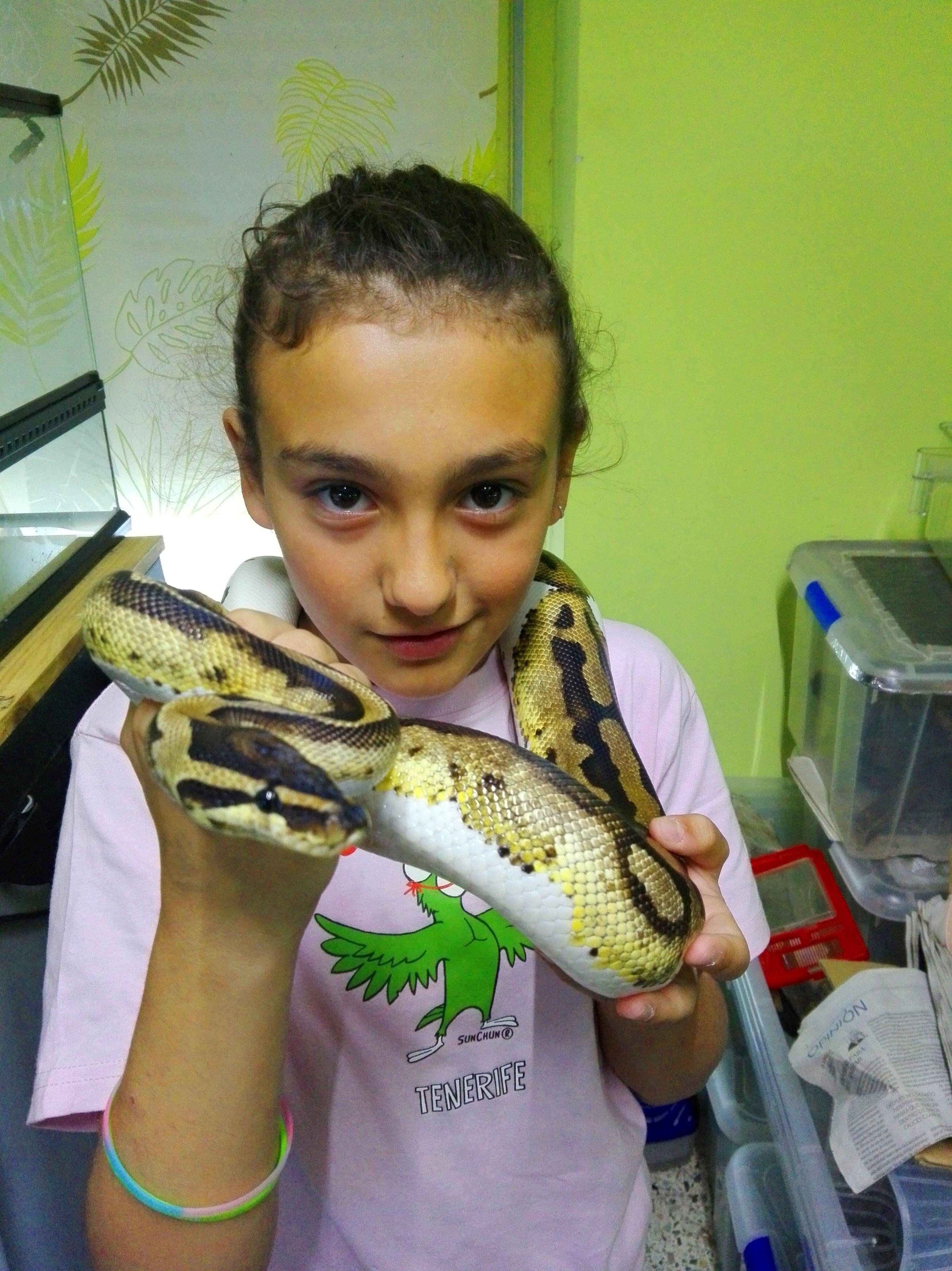 Foto 17 de Tienda de animales exóticos en Viladecans | Reptil Parc