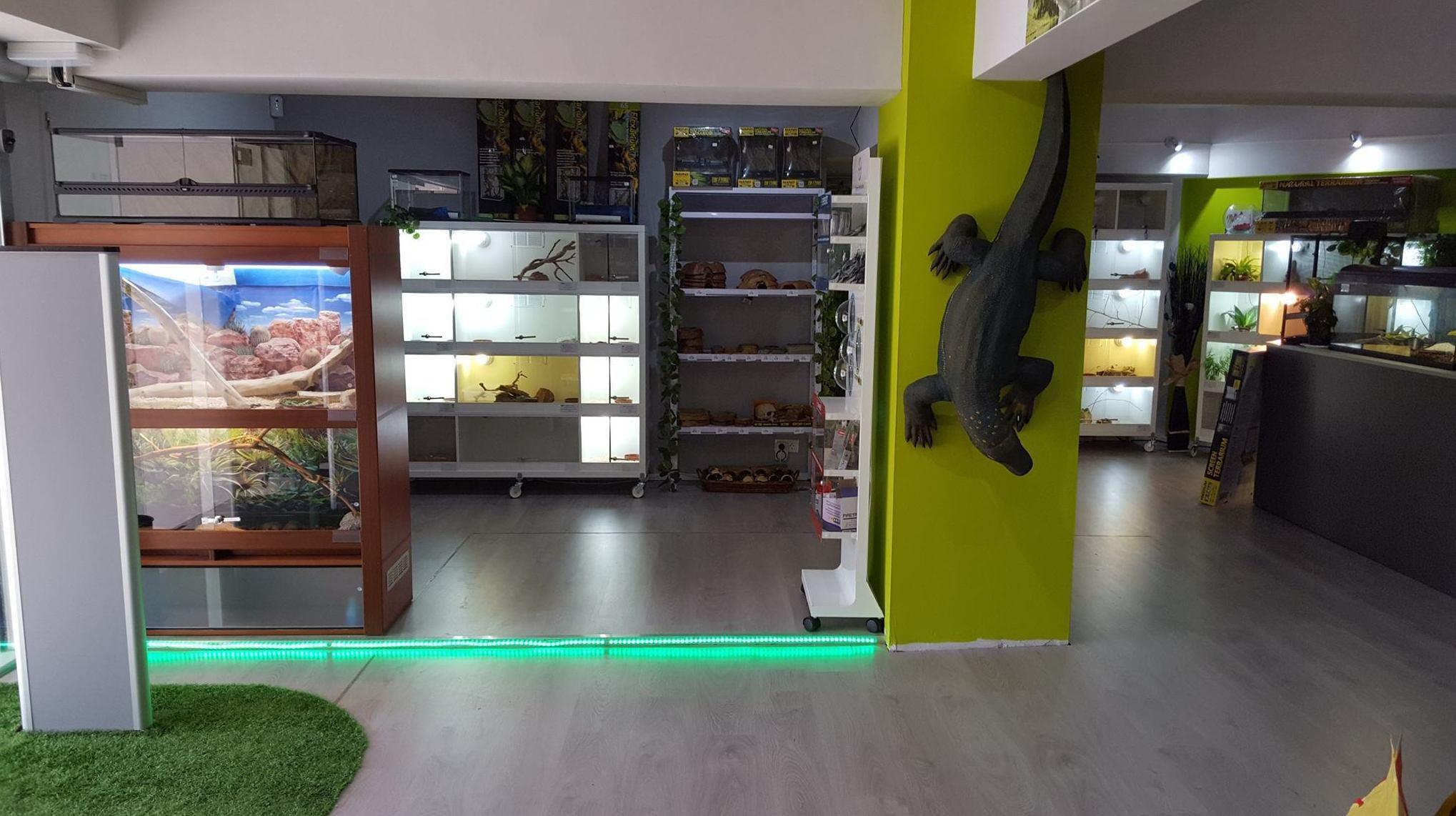 Interior de nuestra tienda de animales
