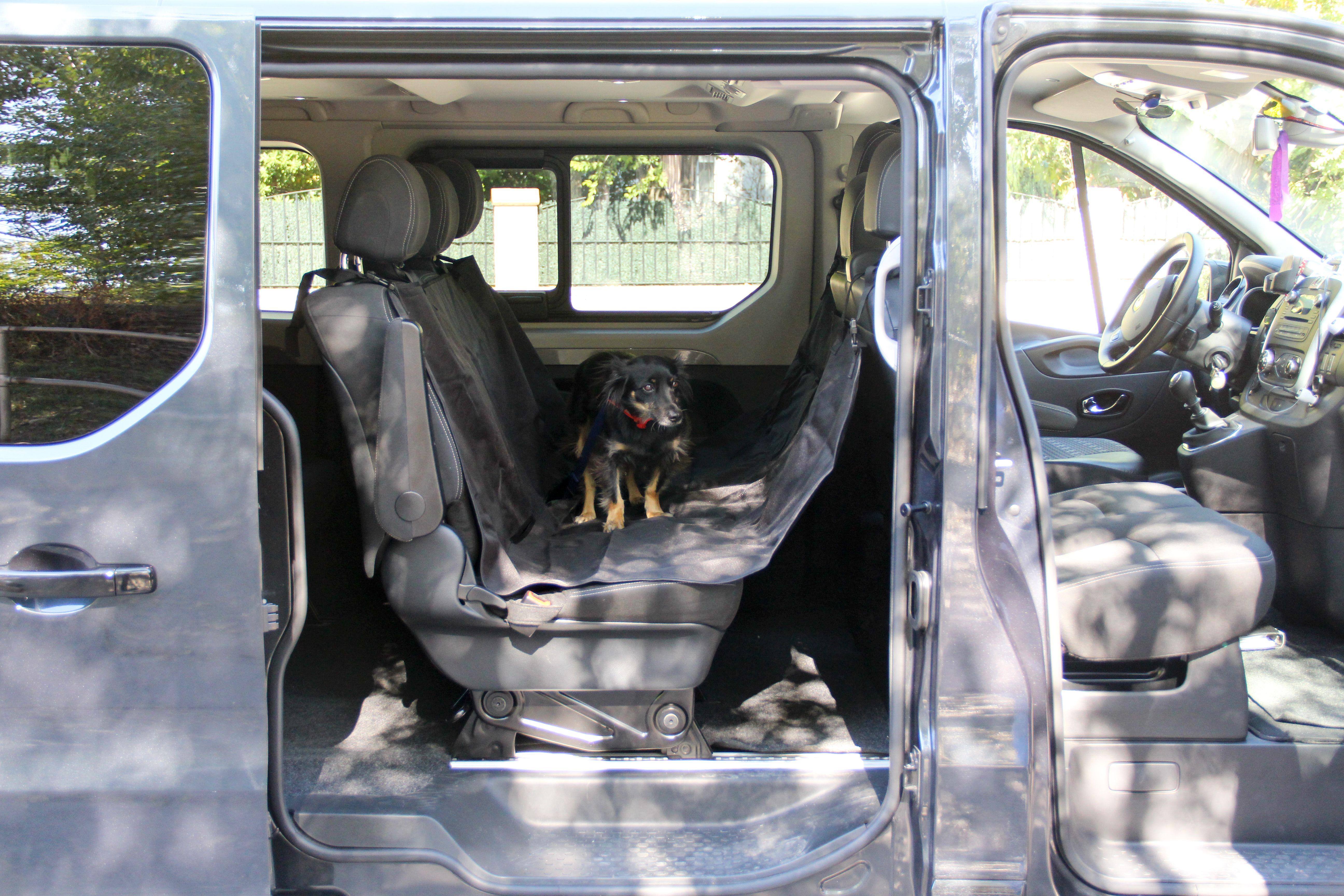 Transporte mascota Mascotas Entur