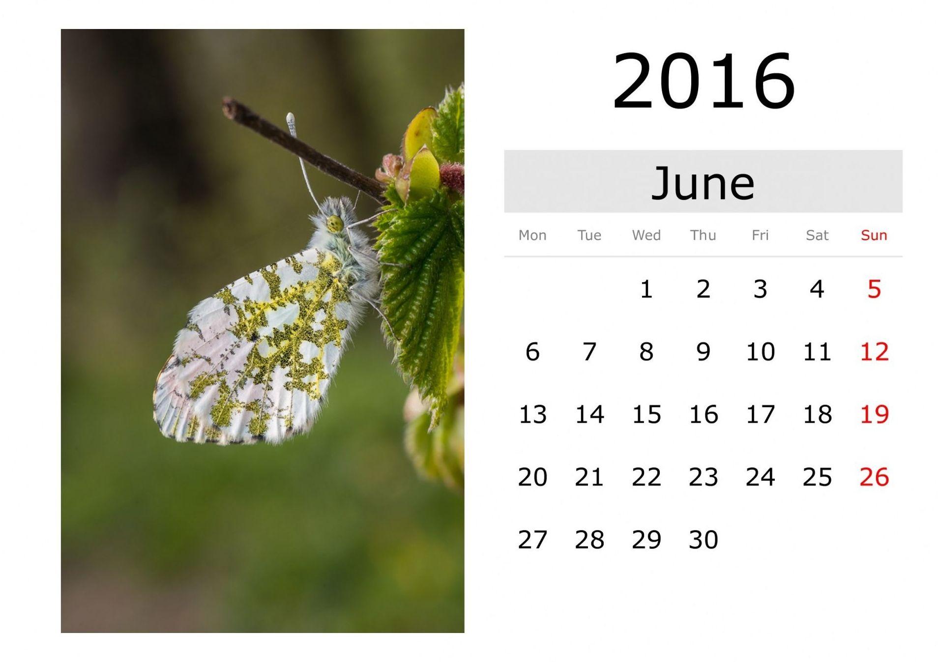 Calendarios Gijón