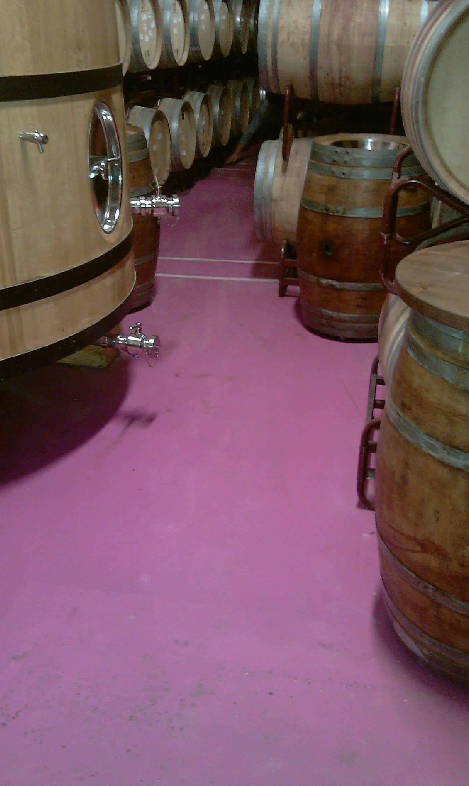 Pavimento continuo sanitario para bodega de vinos.
