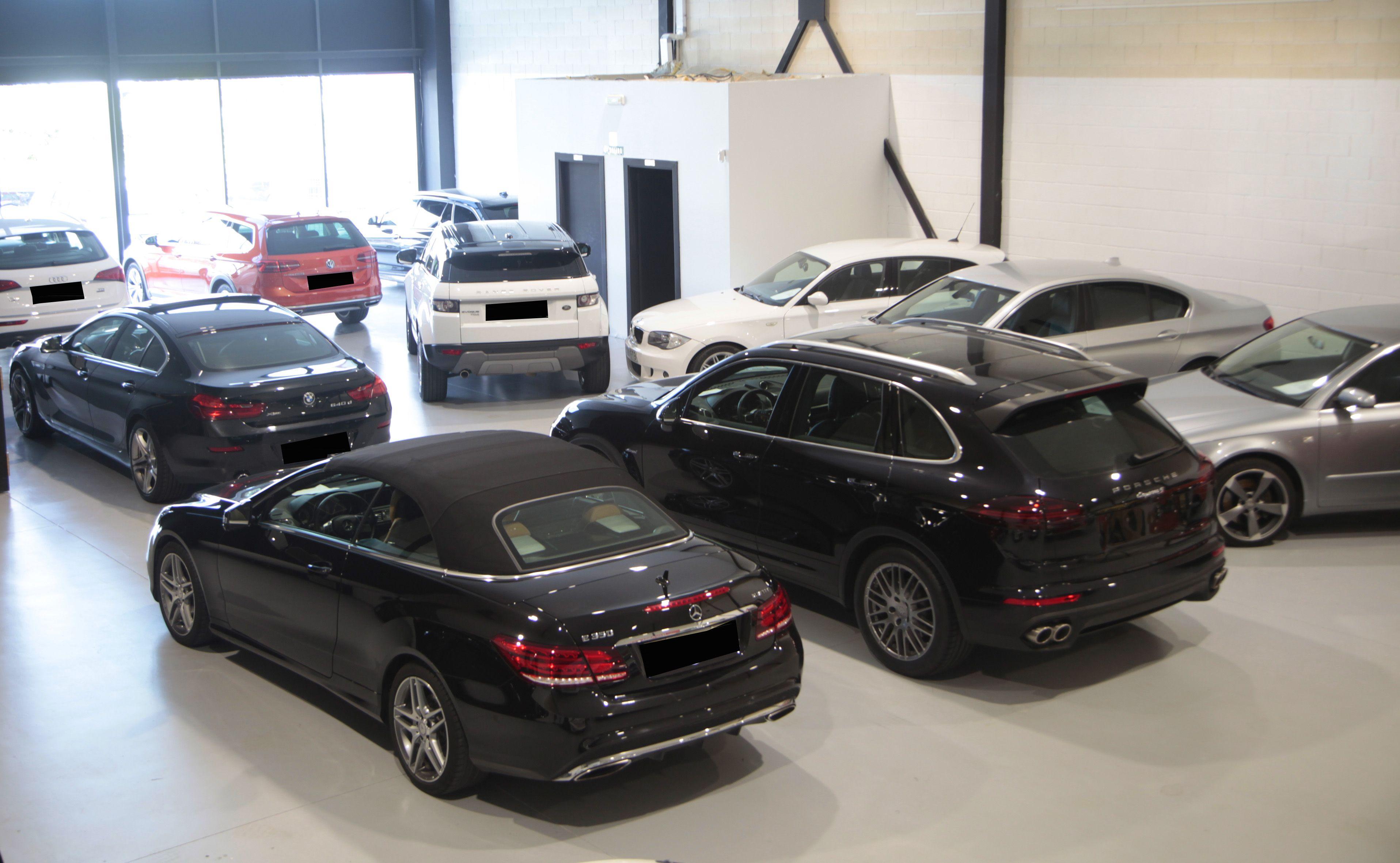 Amplia experiencia en la venta de vehículos