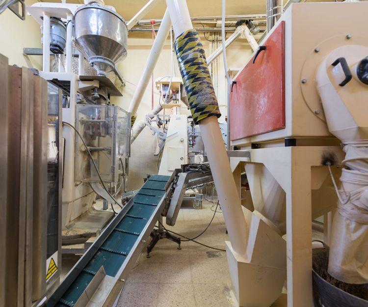 Máquinas para el proceso de elaboración del gofio