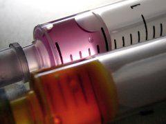Vacunas: Servicios de Centre Veterinari Panda