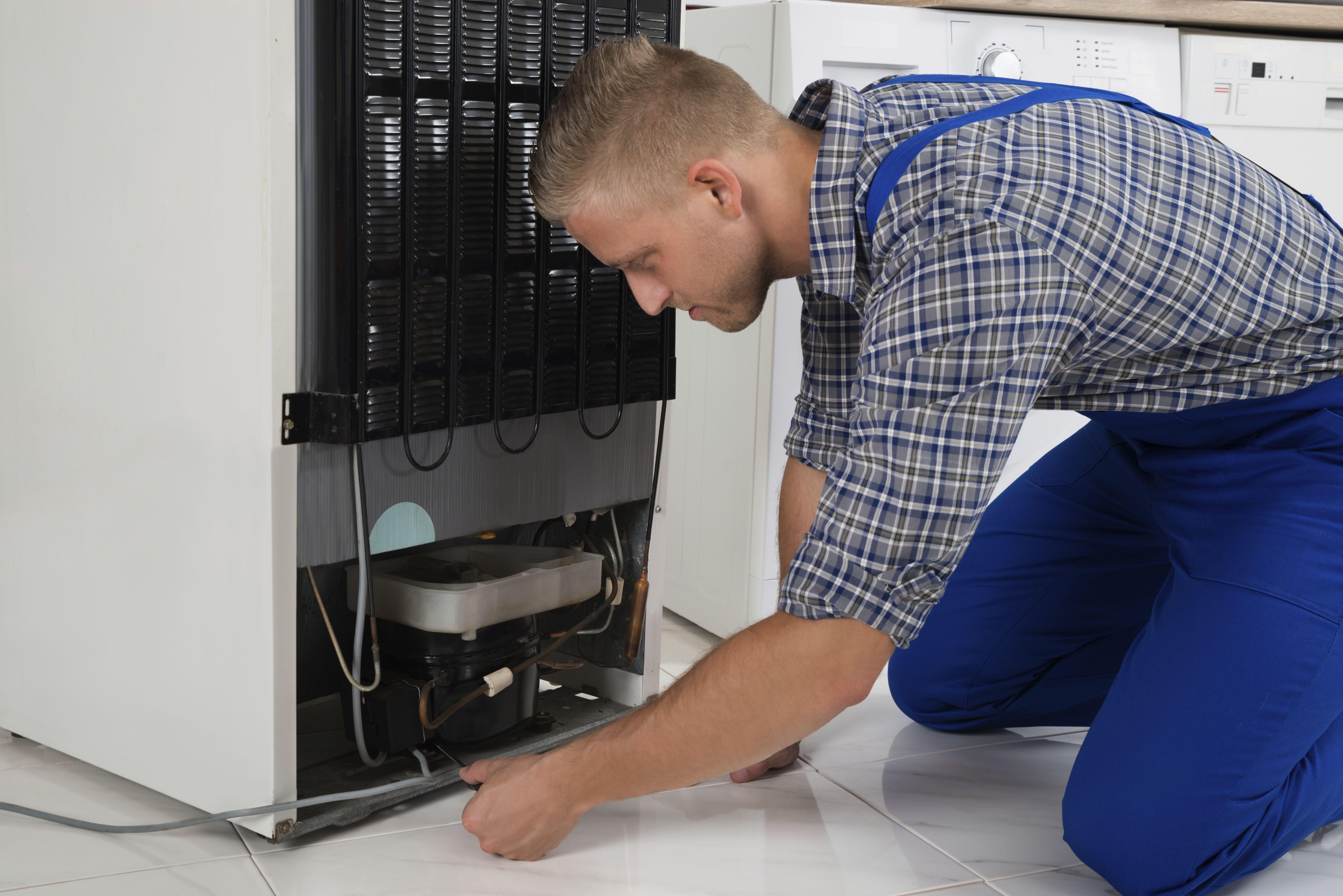 Servicio de reparación de electrodomésticos a domicilio y en taller: SERVICIO TECNICO / de Reparaciones Eléctrica Moreno