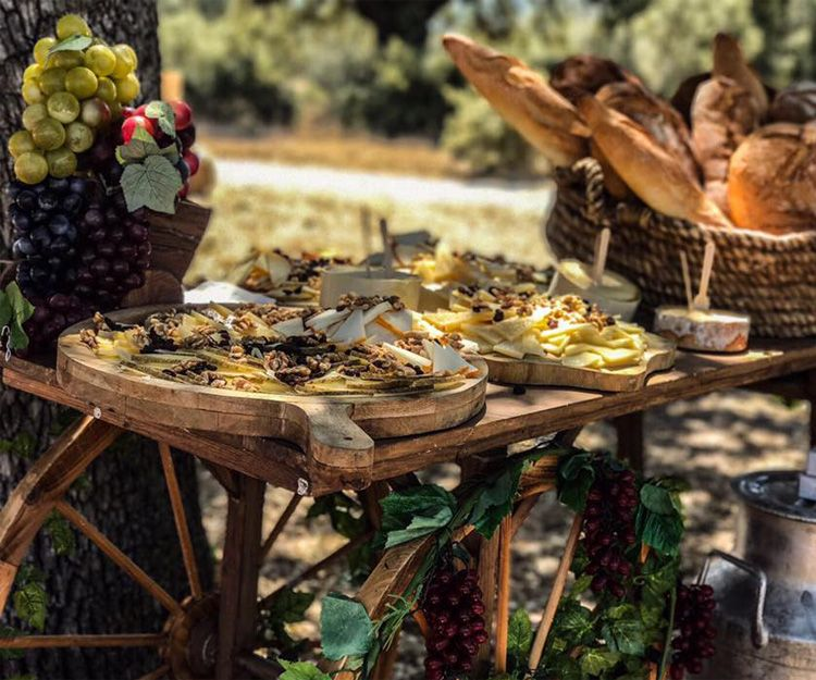 Profesionales de catering en Segovia