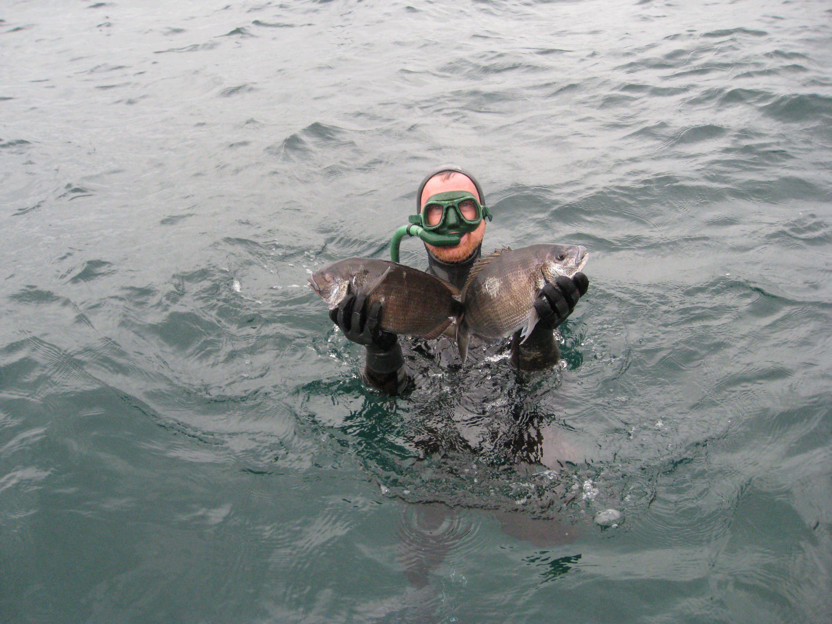 Diversas actividades acuáticas