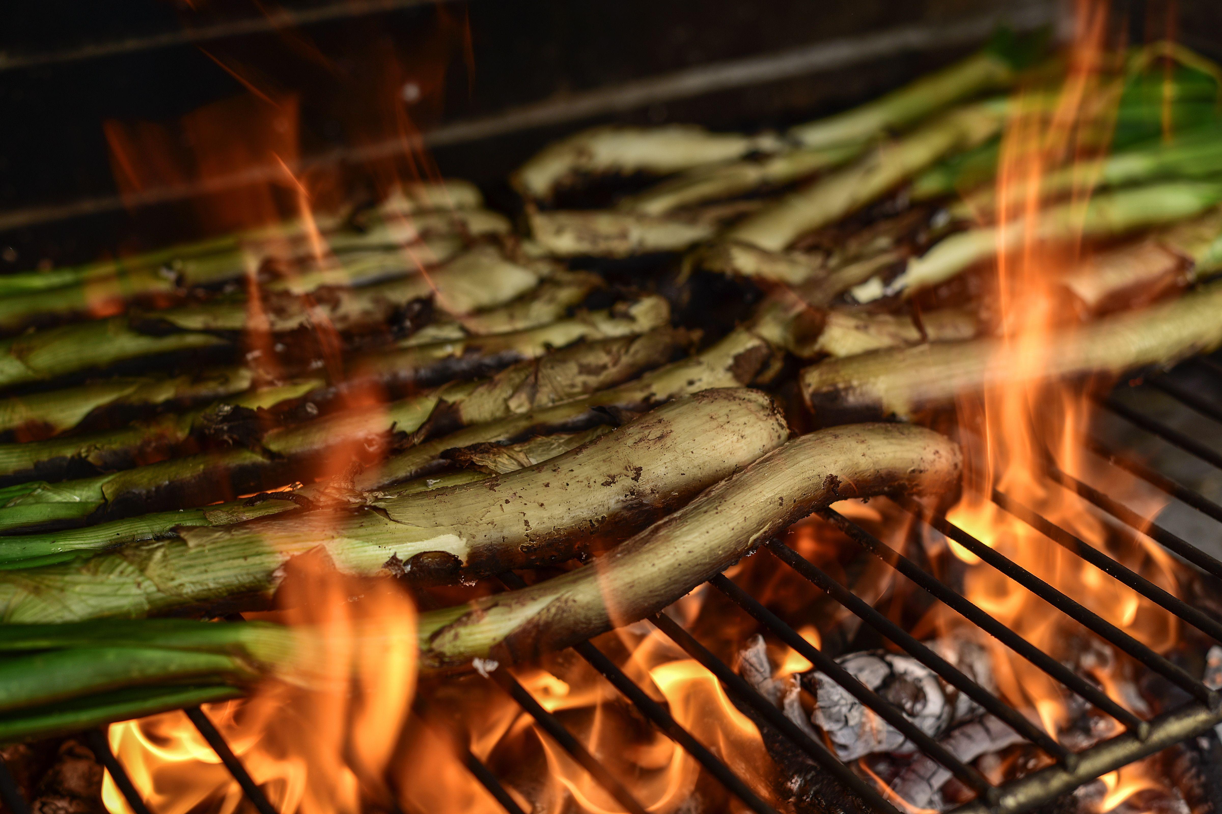 Cocina catalana Lleida