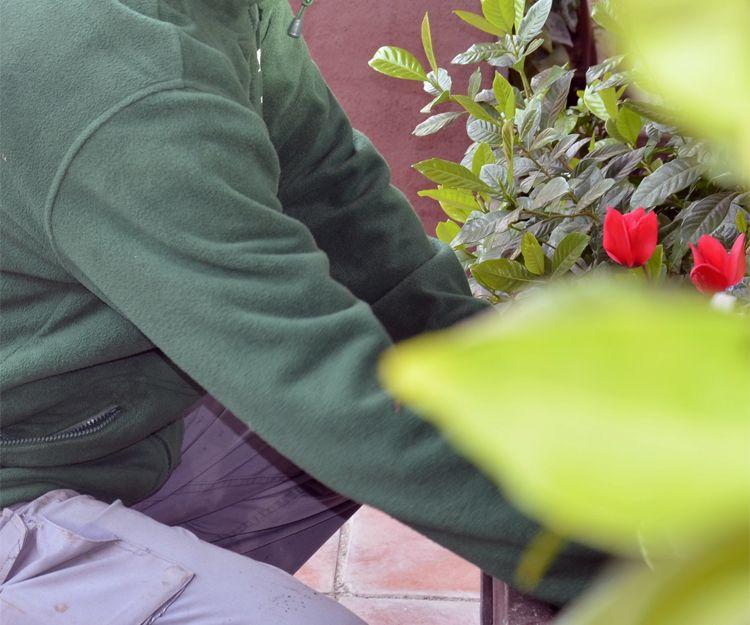 Diseño y mantenimiento de jardines en El Garraf