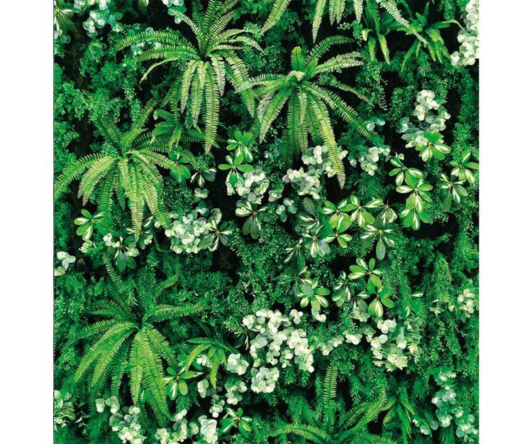 Muros verticales de vegetación
