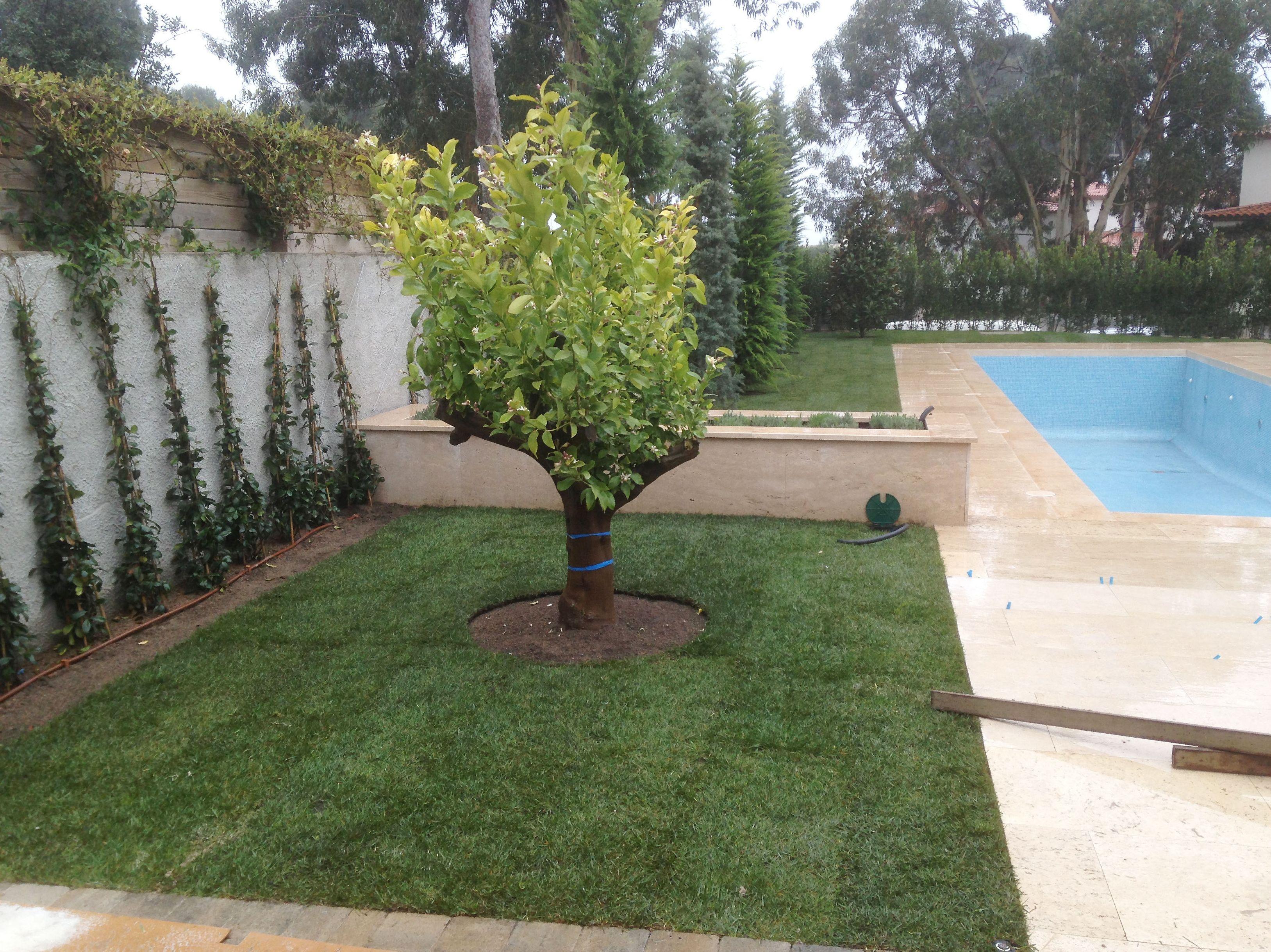 Mantenimiento de jardines en la Costa Brava