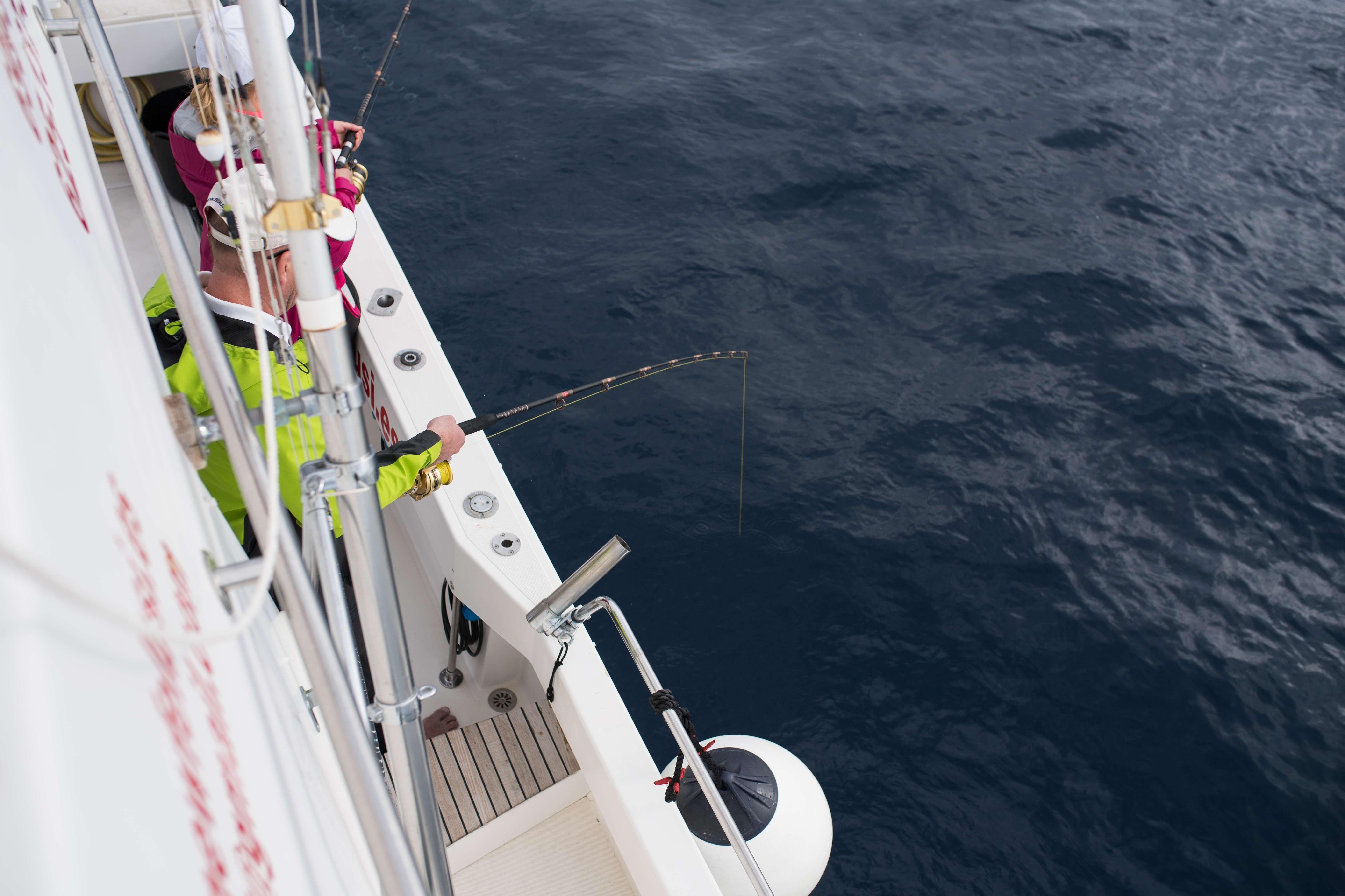 Charter de pesca en Mogán, Gran Canaria