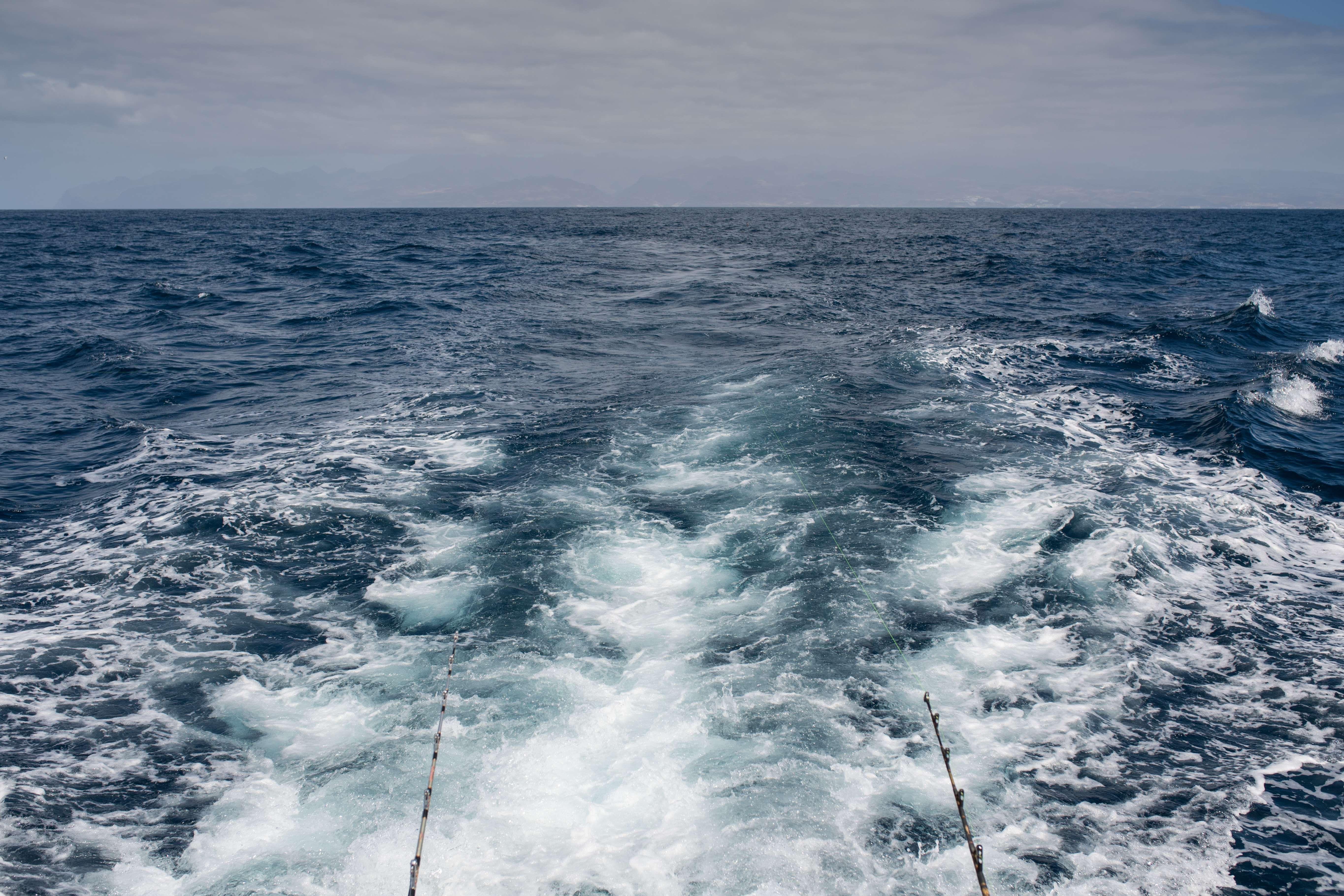 Fishing en Gran Canaria