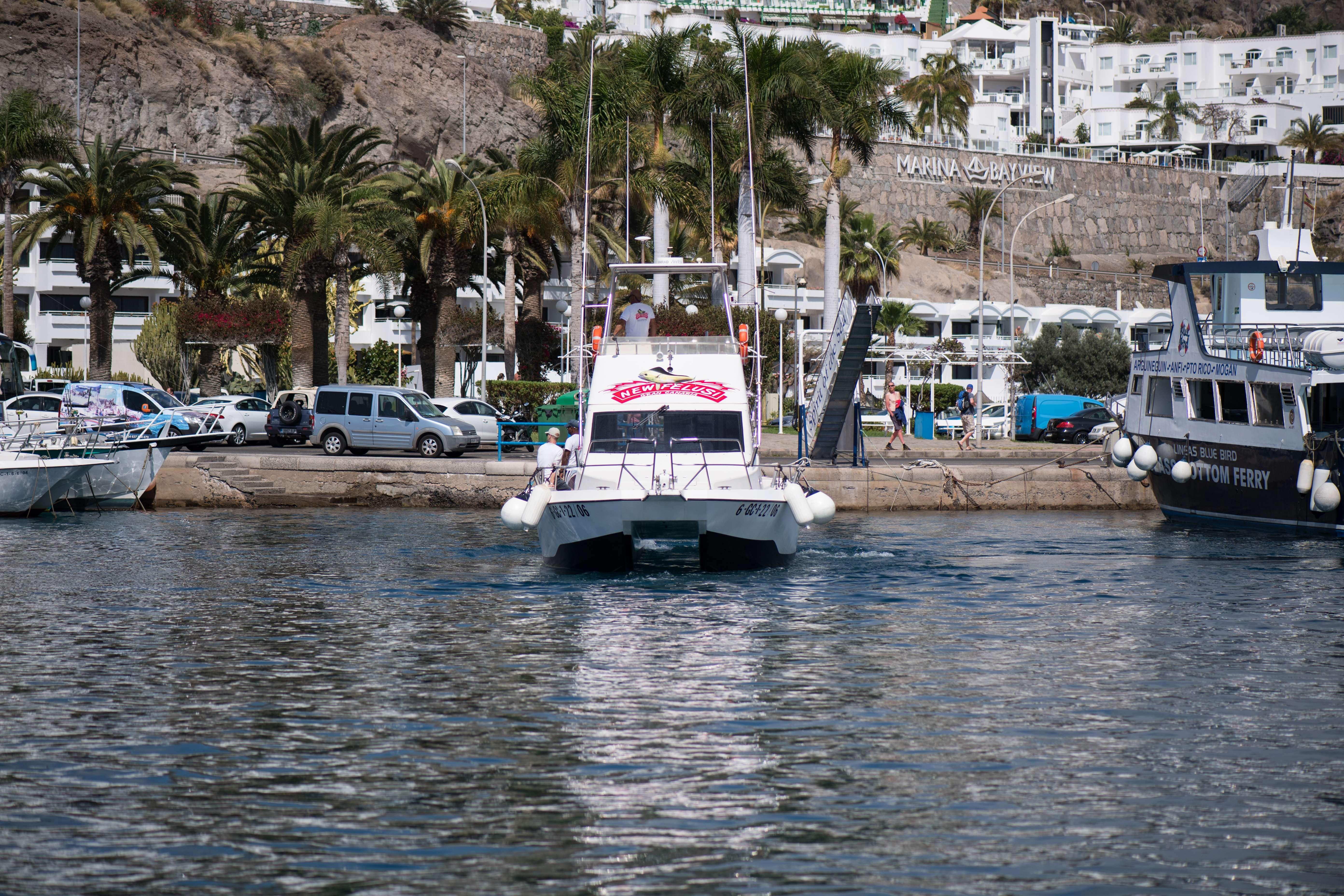 Alquiler de barco de pesca en Gran Canaria