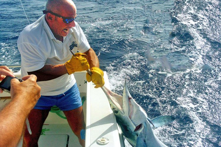 Alquiler de barco para pescar en Gran Canaria