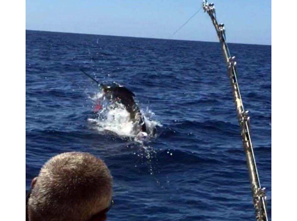Pesca de emperador en Las Palmas