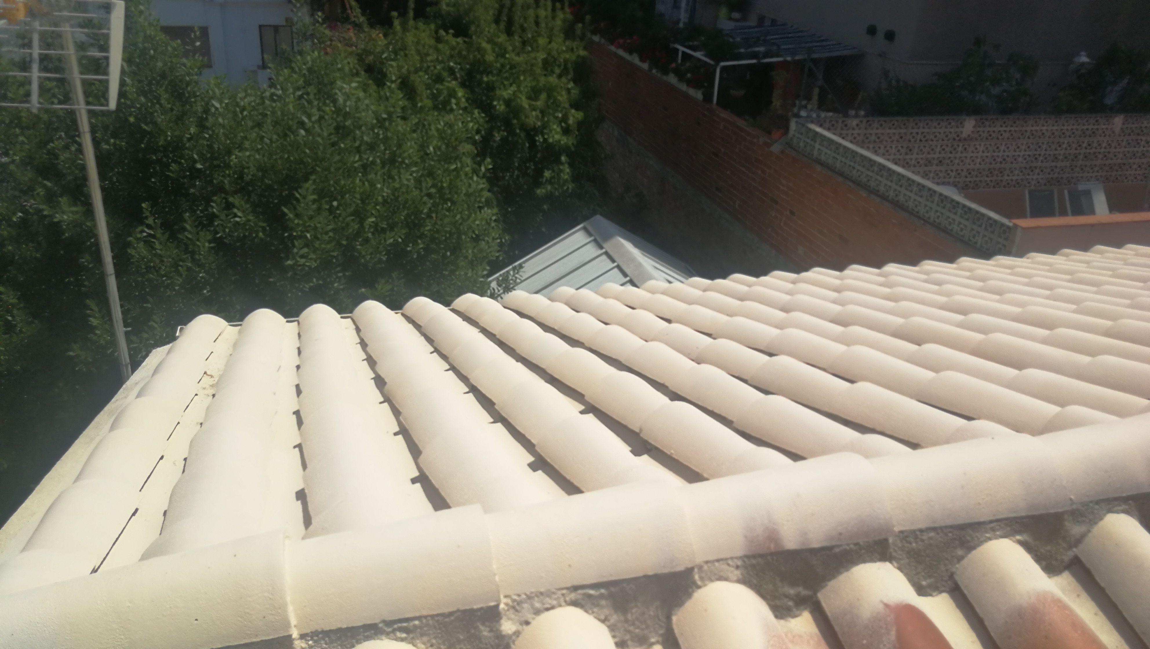 Expertos en protección de tejados