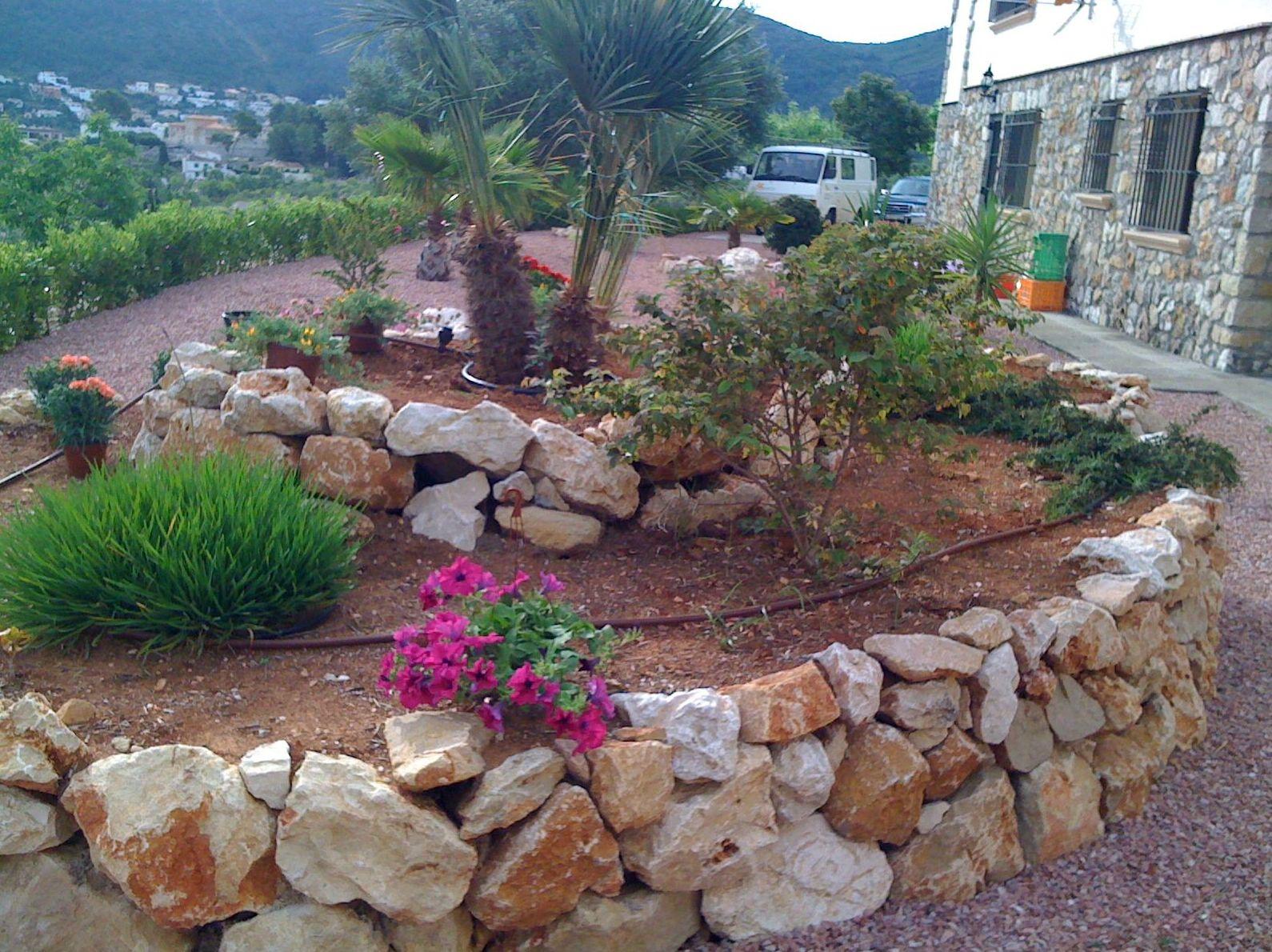 Foto 3 de Especialistas en jardinería: amplio catálogo de plantas y árboles en Pedreguer | Ayamanda