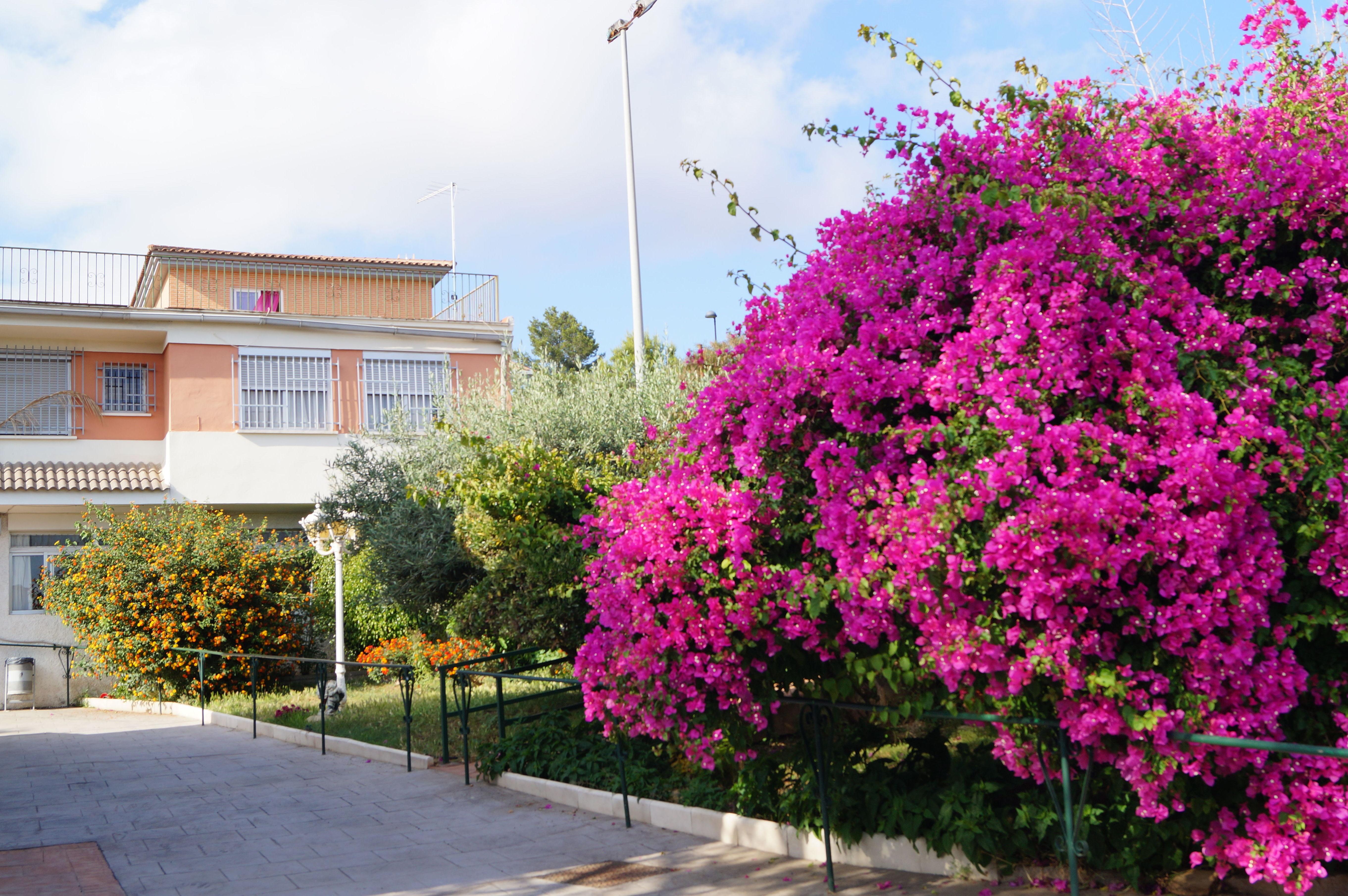Foto 13 de Residencias geriátricas en Torrent | Residencia Ntra. Sra. de la Estrella
