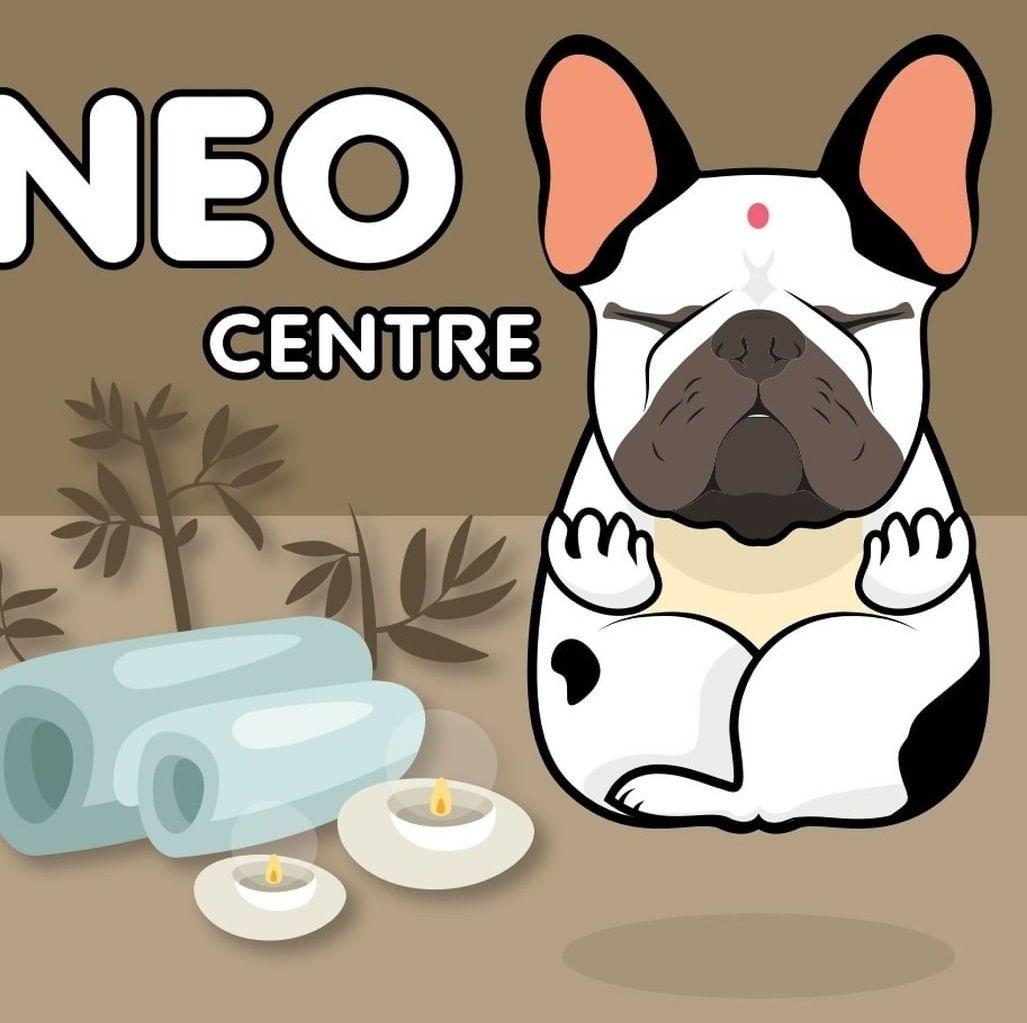 Foto 9 de Peluquerías caninas en  | Centro Neo