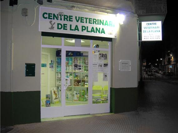 Foto 1 de Veterinarios en Castellón | Centre Veterinari de la Plana
