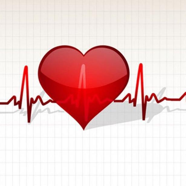 Electrocardiografía: Servicios de Centre Veterinari de la Plana