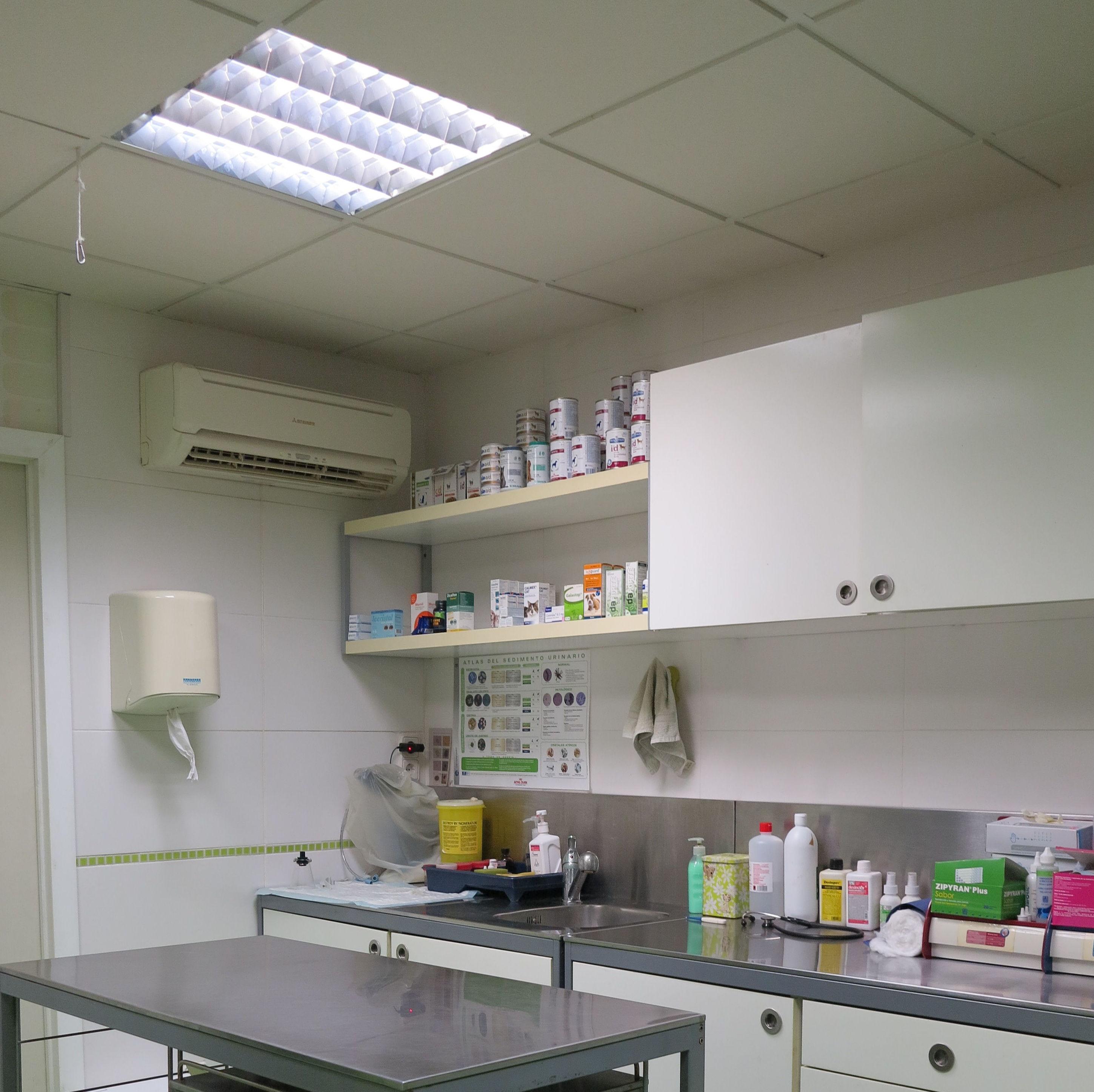 Zona de exploración de los pacientes de la clínica veterinaria