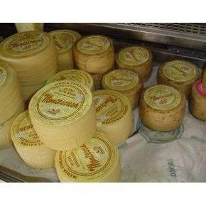 Comprar queso manchego semicurado piezas