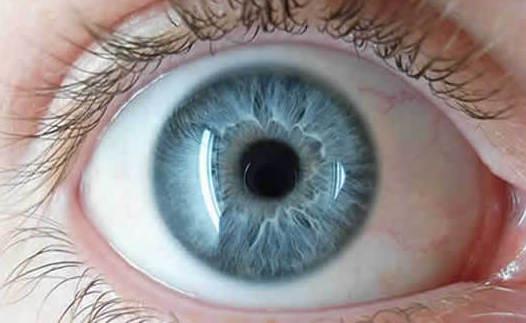 Toma de presión intraocular