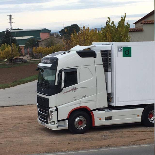 Transporte frigorífico: Transporte de alimentos de Transportes Jordifrigo