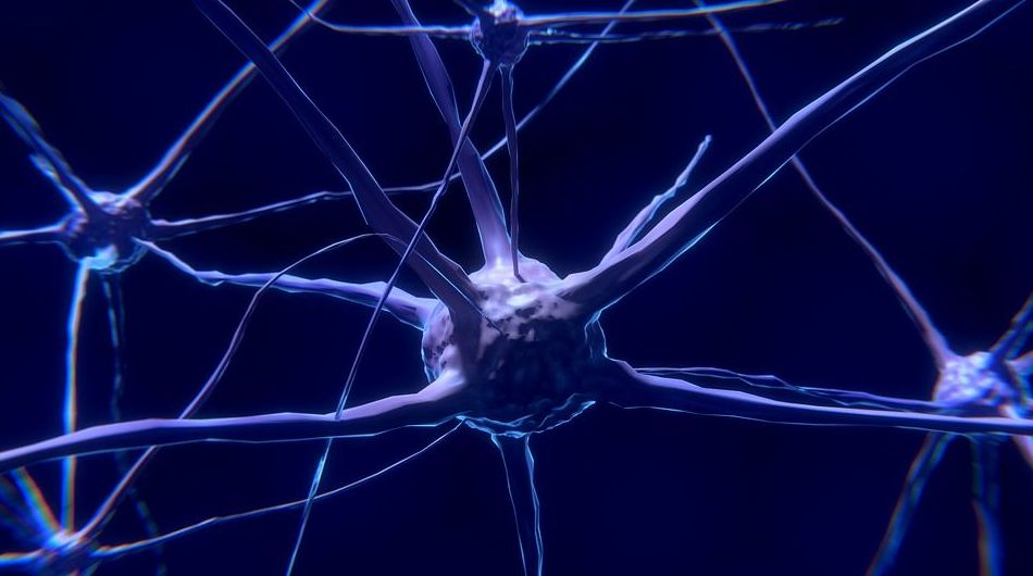 Un chip en el cerebro consigue que una mujer con ELA se comunique