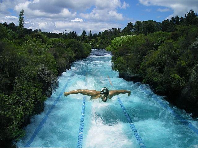 Fabricante de piscinas en alicante historia de la piscina ol mpica - Fabricante de piscinas ...