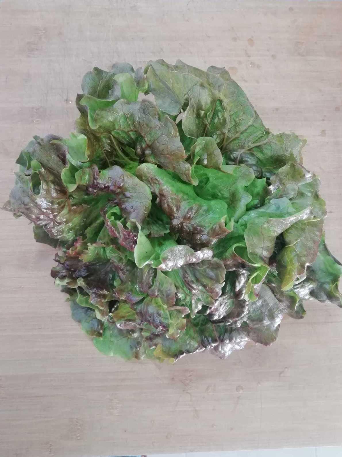 Foto 8 de Tienda de alimentos ecológicos en    Gust i Colors