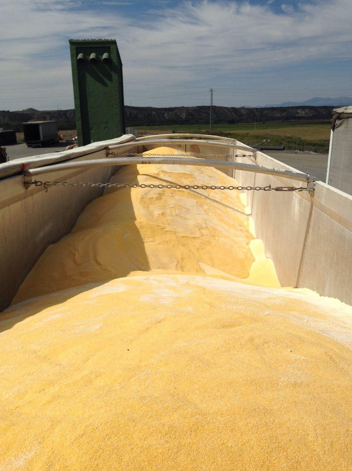 Transporte de cereales: Servicios de Transportes La Cartuja de Granada, S.L.