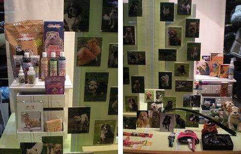 Febrero 2009. Imágenes de perros Bilbao