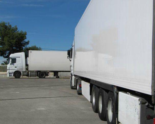 Almacenaje: Servicios de Kronofrío Logistics