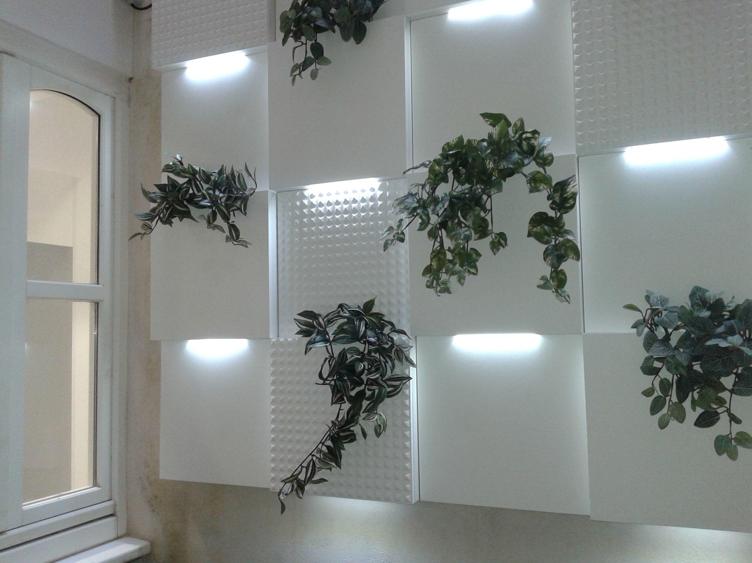 Javier Perez dentista - Jardín vertical
