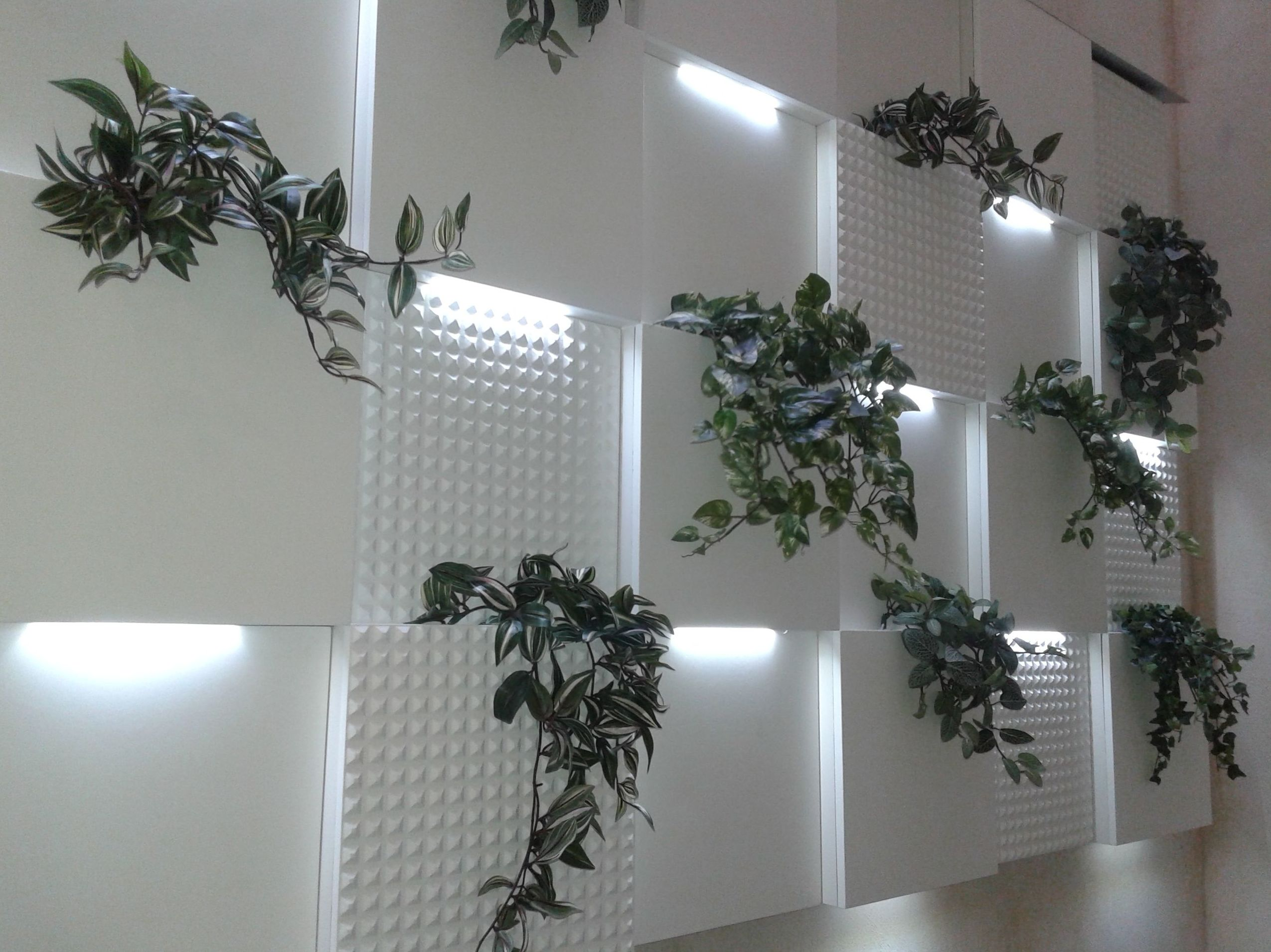 Javier Perez dentista - Pared vegetal