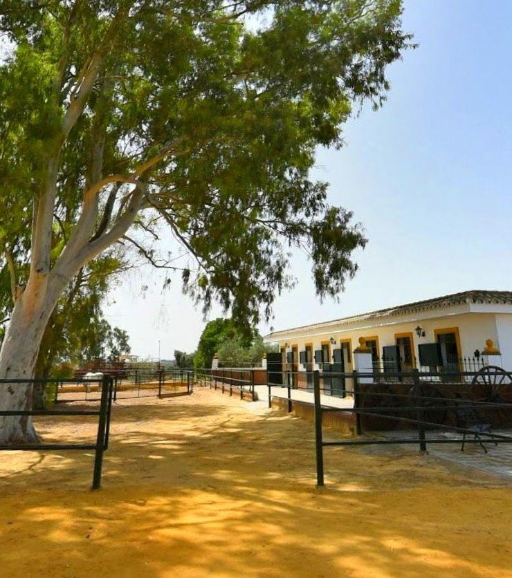 Haciendas y fincas para bodas celebraciones y eventos en Sevilla