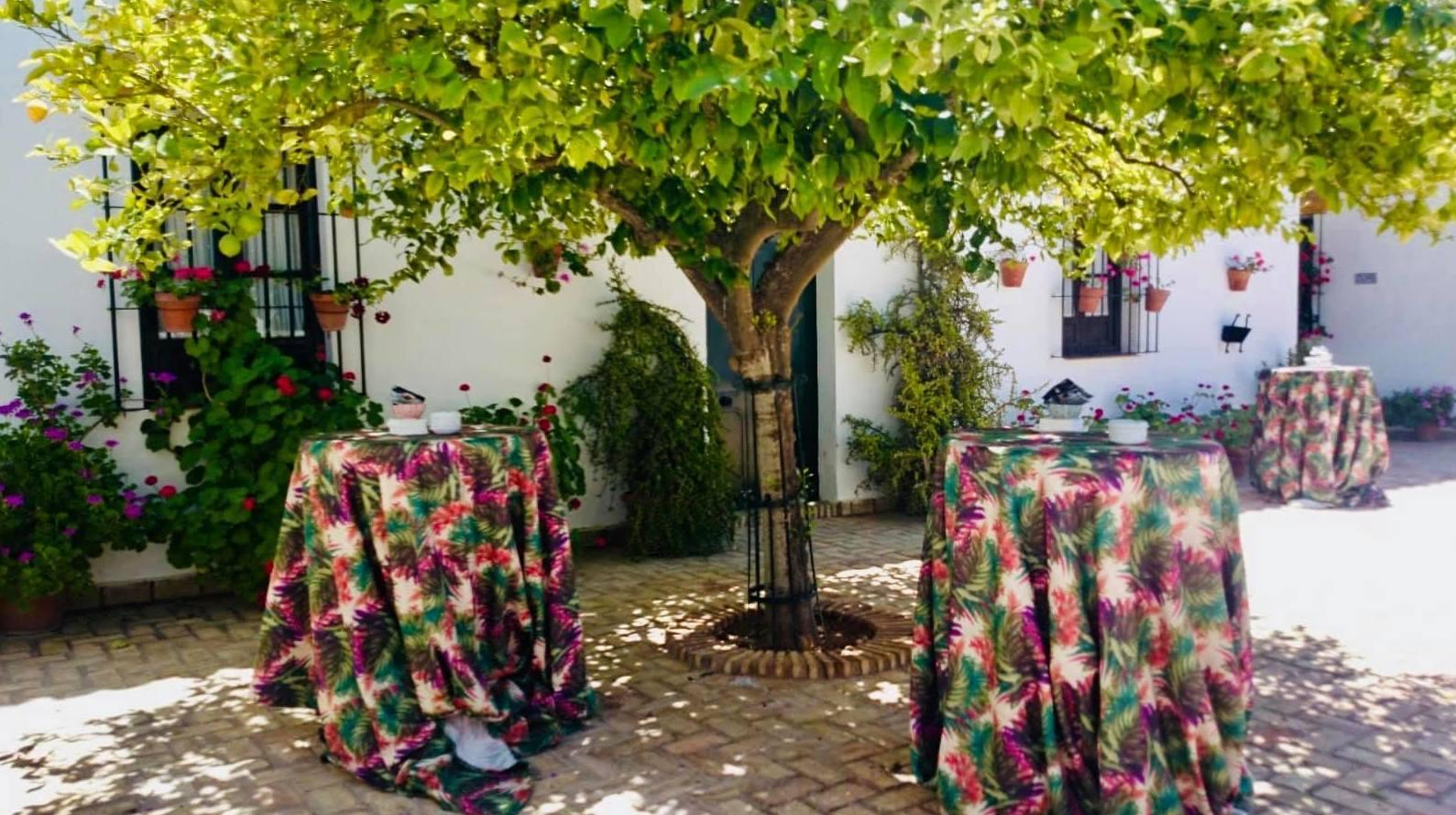 Foto 26 de Celebración de bodas en Alcalá de Guadaíra | Hacienda Mendieta