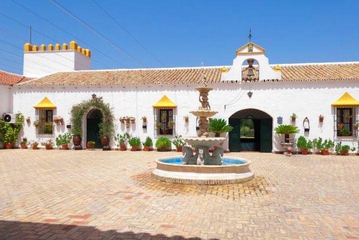 Foto 80 de Celebración de bodas en Alcalá de Guadaíra | Hacienda Mendieta