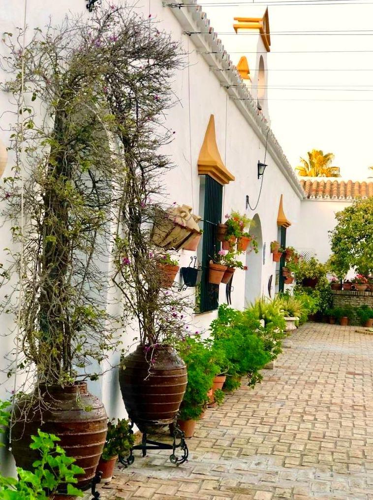 Foto 21 de Celebración de bodas en Alcalá de Guadaíra | Hacienda Mendieta