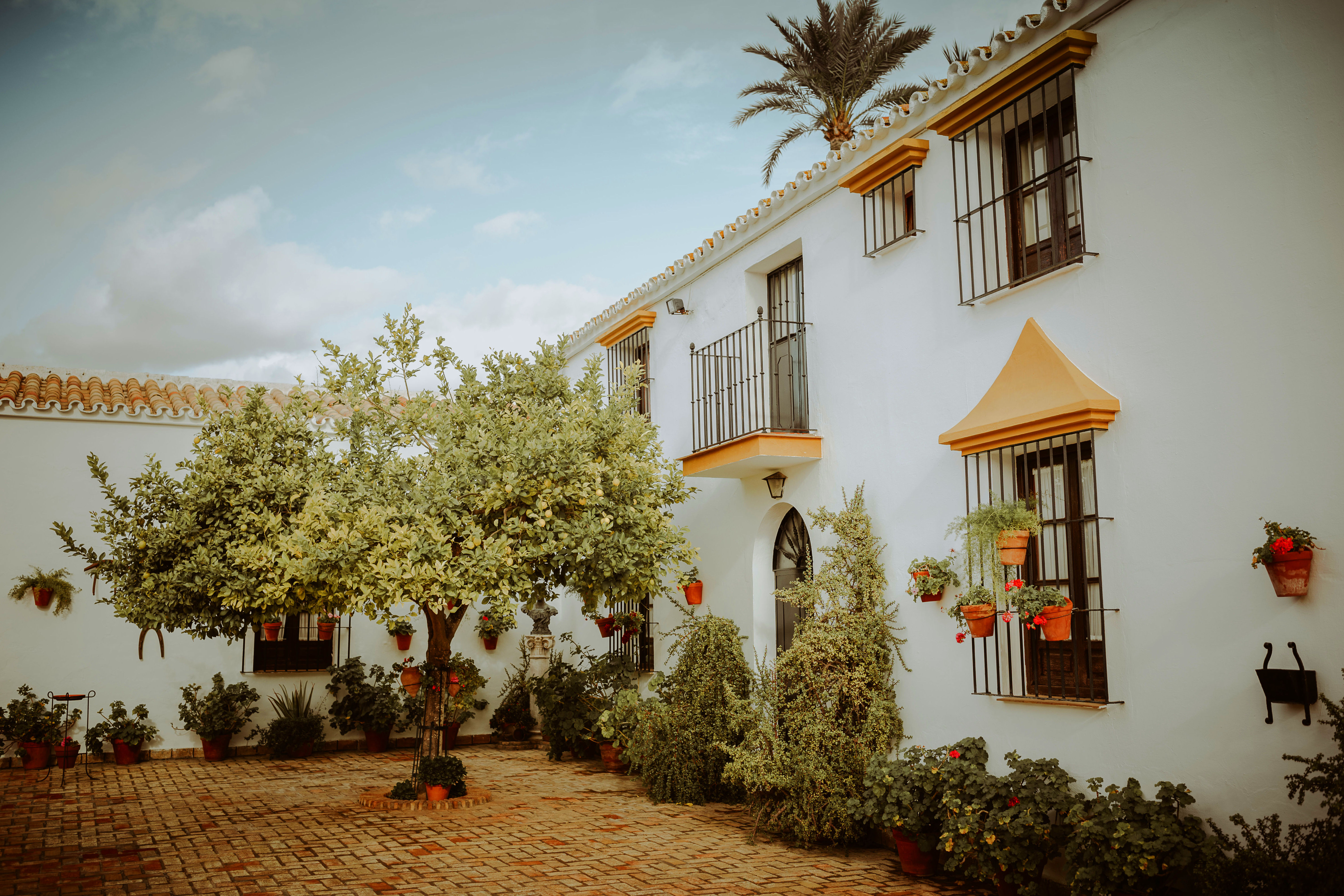 Foto 23 de Celebración de bodas en Alcalá de Guadaíra | Hacienda Mendieta