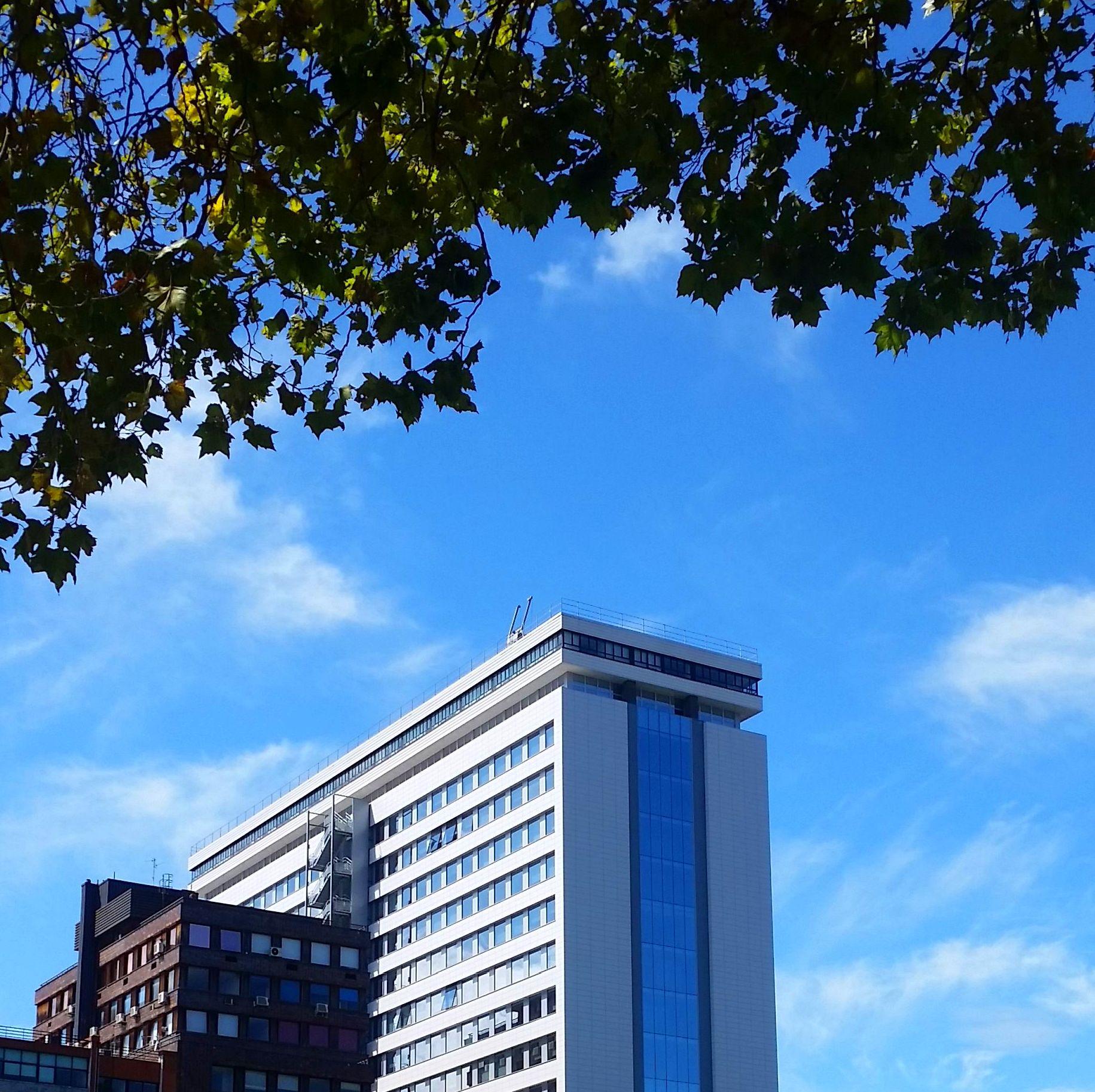 Bilbao oficinas en Edificio Albia